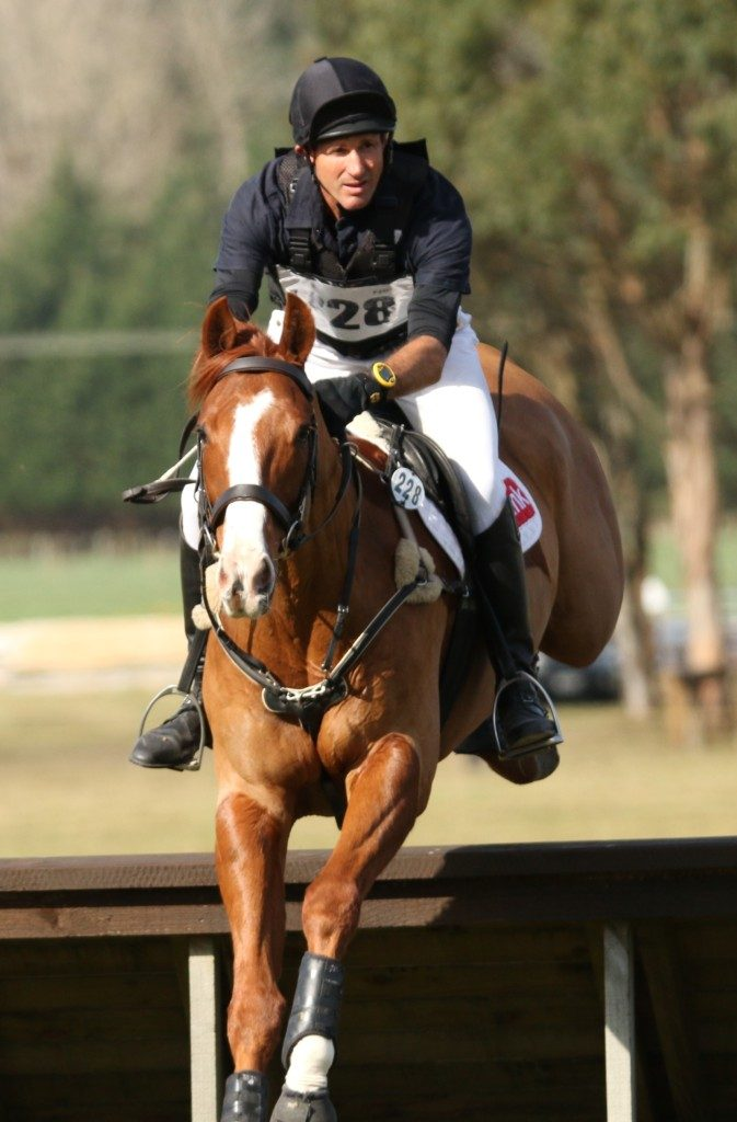 Brent Jury and SE Hedging, full of exuberance! (Image: NZ Horse & Pony)