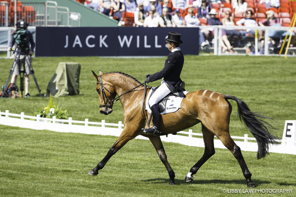 AUS-Sam Griffiths (PAULANK BROCKAGH) INTERIM-: DRESSAGE - Day 1: 2016 GBR-Mitsubishi Motors Badminton Horse Trials CCI4* (Wednesday 4 May) CREDIT: Libby Law COPYRIGHT: LIBBY LAW PHOTOGRAPHY