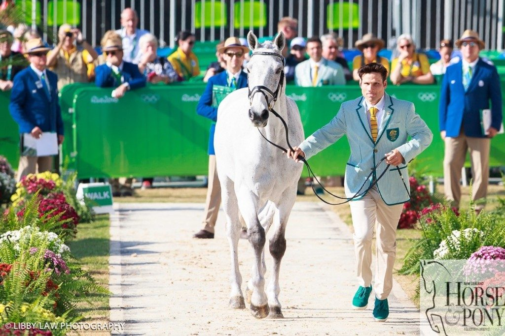 All concentration! Shane Rose and CP Qualified through the trot up. (Image: Libby Law)