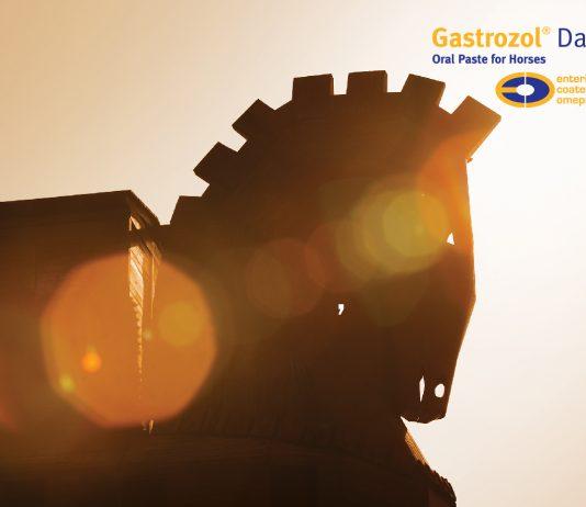 Gastrozol